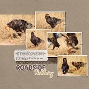 Roadside Robbery