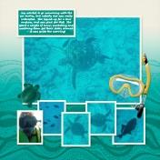 Snorkel Trip I
