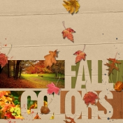 Fall Colors and Leaves