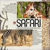 Giraffe & Zebra Safari