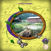 Bugs In My Garden Layout #5