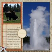 Yellowstone 2014 (B)