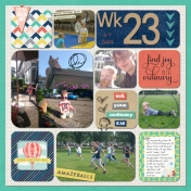 Wk 23A