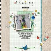 Spring Shopping | 2020