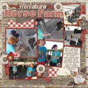 2017 CA Miniature Horse Farm