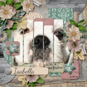 Isabella Close Up