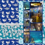 Shark Bridge @ Adventure Aquarium