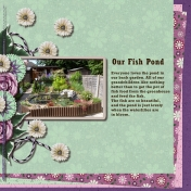Our Fish Pond