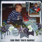 Look What Santa Brought