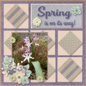 Spring is on it's way 2