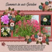 Summer in our Garden 2