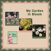 My Garden in Bloom