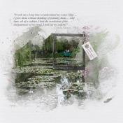 Water lily pond (monet garden)