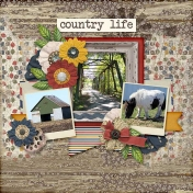 Country Lifetime