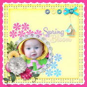 Spring Blooms Again