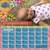 12 x 12 Calendar 2017 Maya