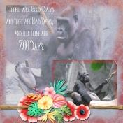 Zoo Days