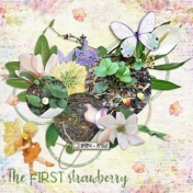 The first strawberry