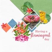 A Flamingood Day