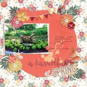 A Basketful of spring
