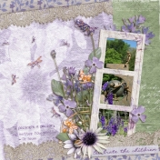 Celebrate the children (Lavender fields)