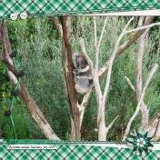 Koala (Gleeful Green)