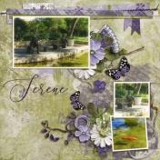 Serene (Lavender Shade)
