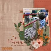 Llama tell you something (Blooming Desert)