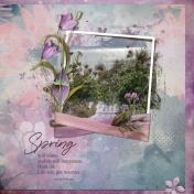 Spring (Magical Wonders)