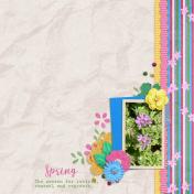 Spring (My Spring Garden)