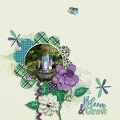 Bloom & Grow (Bloom and Grow)