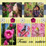 Focus on Nature
