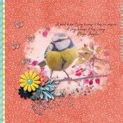 A Bird Sings