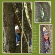 Fun Tree