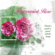 Peppermint Rose Mask 5 Lady 22