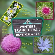 Winters Branch Trail