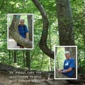 Bent Tree Hike