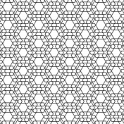 Paper 224- Geometric Overlay
