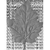 Craft Oak Leaf 01 Template