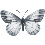 Butterfly #01 Template