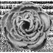 Paper Rose Template 01