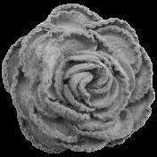 Paper Rose Template 02