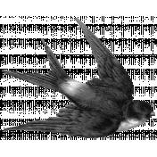 Vintage Bird Template