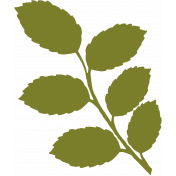 Leafy Branch Illustration- Template 10