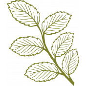 Leafy Branch Outline 10- Template