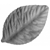 Craft Leaf Template