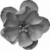 Spookalicious- Element Templates- Large Flower 02