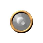 Brad Set #2- Small Circle- Gold