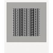 Frame Shape 34 - Polaroid