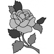 Rose Illustration Template